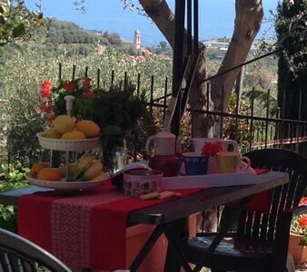 Sapore di Liguria, sole,mare, olive - Apartment