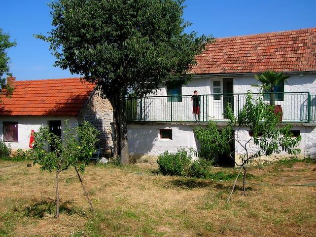 La Maison atypique à Mokro Polje - Mokro Polje
