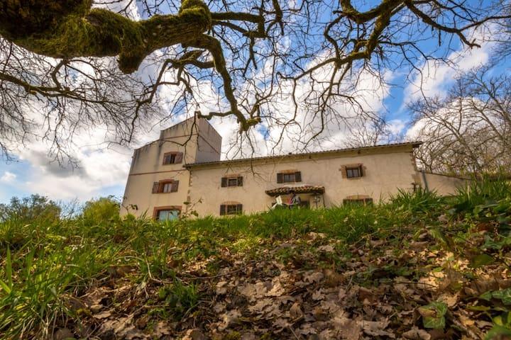 Gîte le Grand Chêne - Briatexte - House