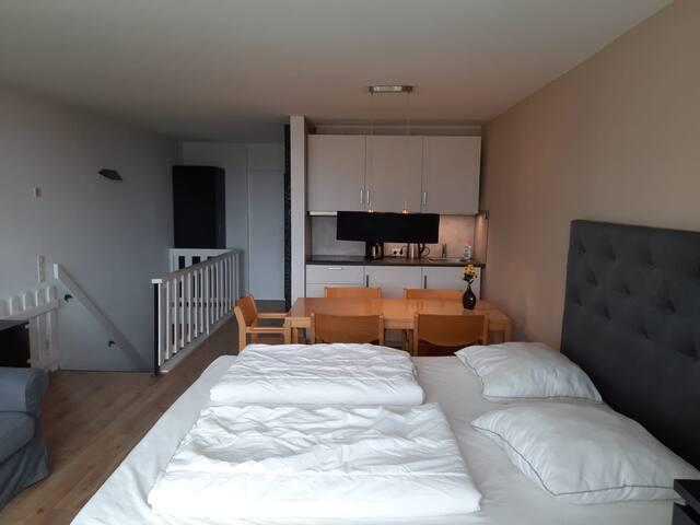 Wohn/Schlafzimmer mit Küche