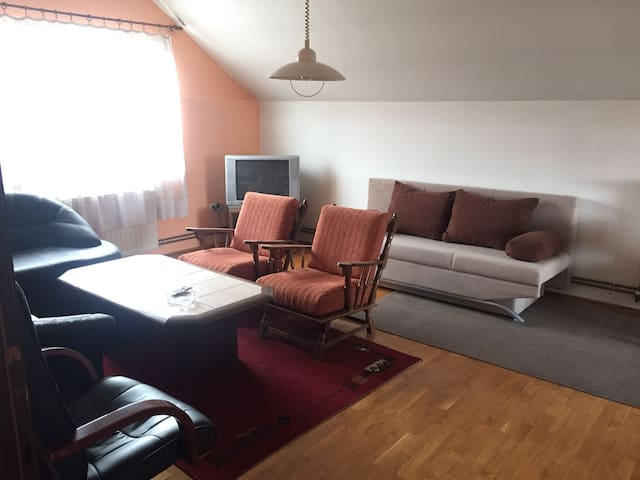 Big flat with 5 beds and 20min to Zagreb centre - Lučko - Leilighet