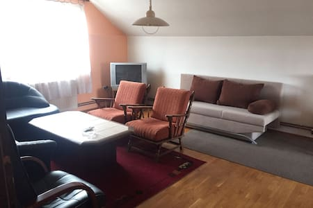 Big flat with 5 beds and 20min to Zagreb centre - Lučko - Huoneisto