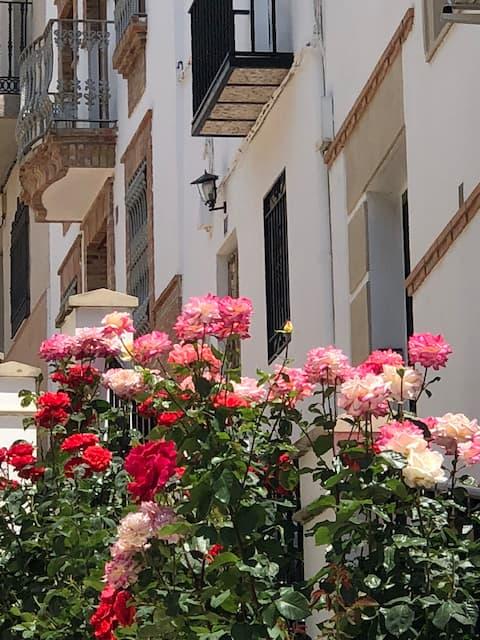 Piso calle CañadaVFT/JA/00055. Piso entero