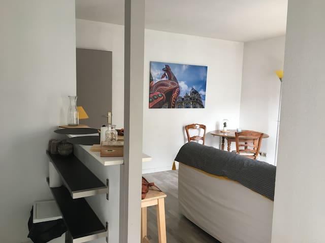 Studio calme  centre  vieux Lille ,chambre séparée