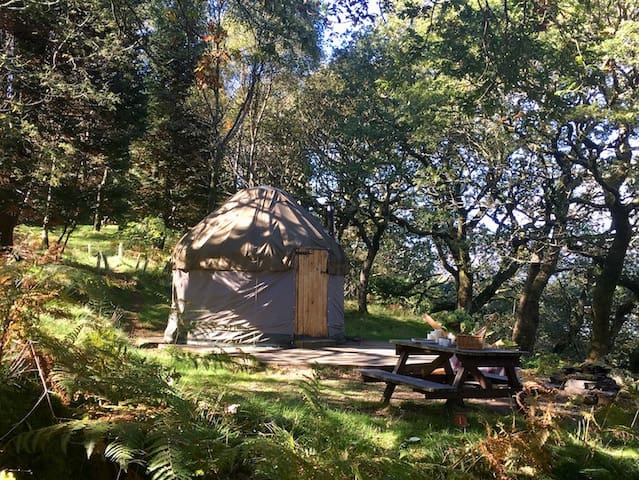 Snowdonia Yurt near Barmouth and coast