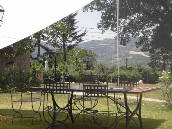 Farm house Vigne di Pace apartment Molino