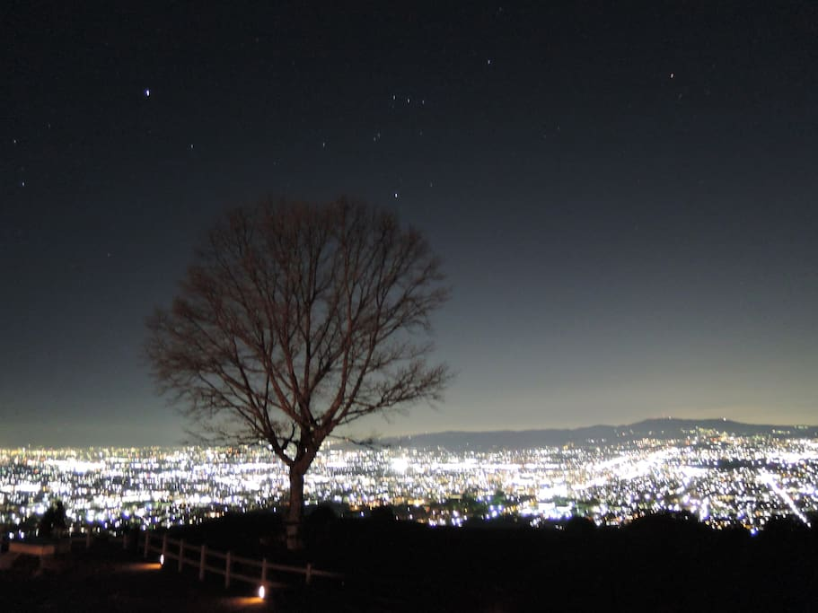 Top of Mt.Wakakusa (night view spot)