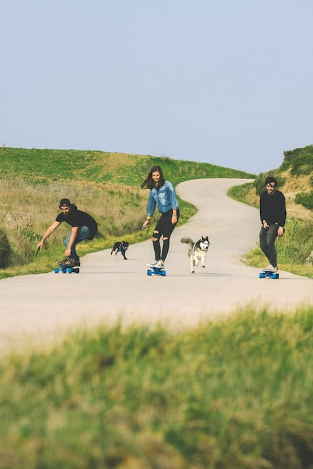 Tour with Electric Skate (only rent to the guests)