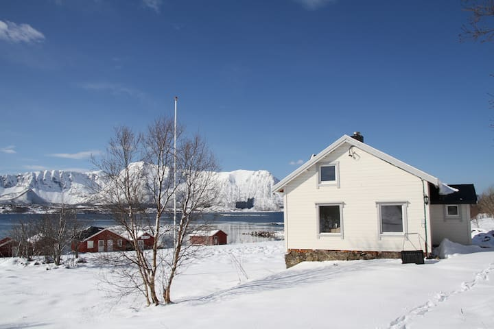 Cosy North Norwegian House from year 1890