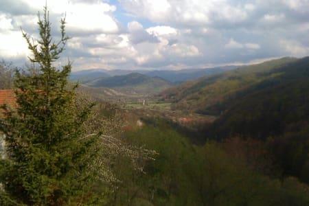 Sunny Villa Antoaneta - Terziysko