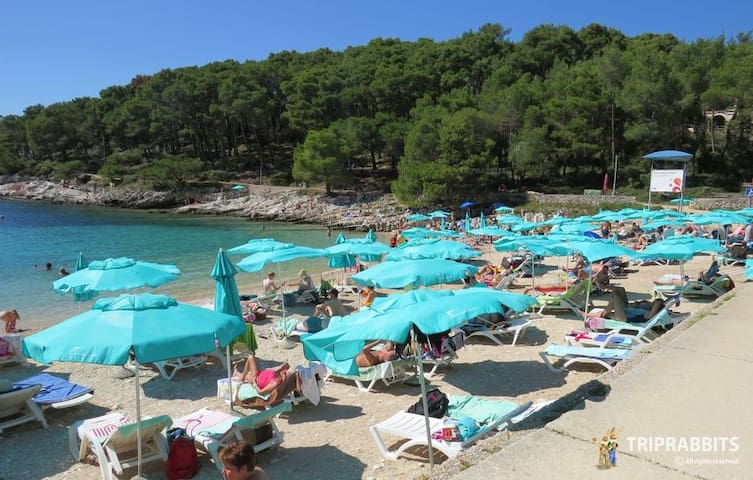 Beach Veli Zal