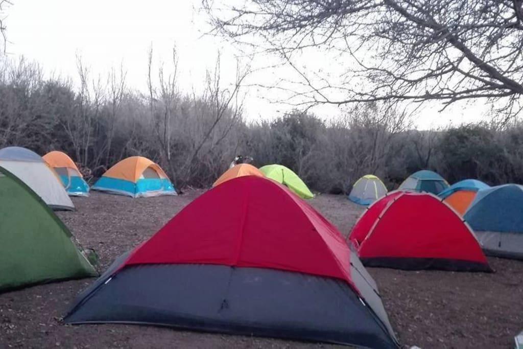 Zona de Camping #2