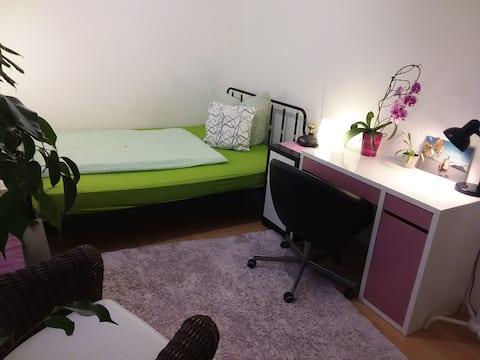 Schönes, helles Zimmer in bester Lage, altstadtnah