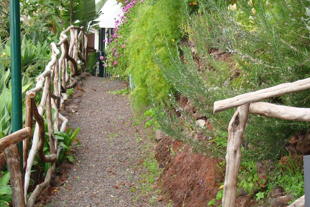 Acesso directo ao jardim da propriedade