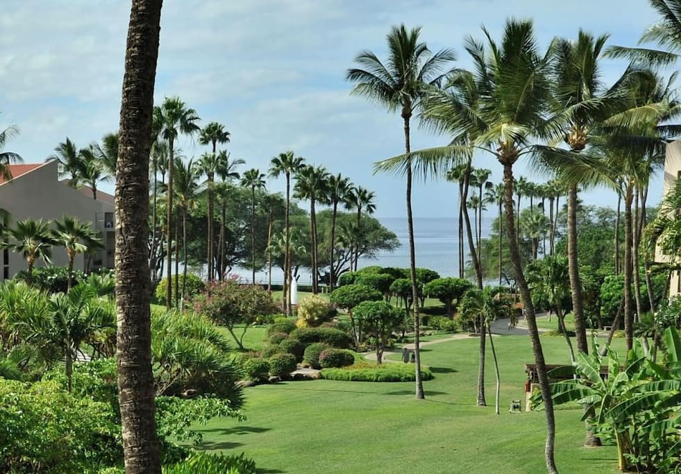 View From Lanai, Coral Suite 302
