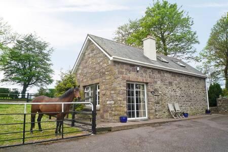 Coachford nr Cork (W5861)