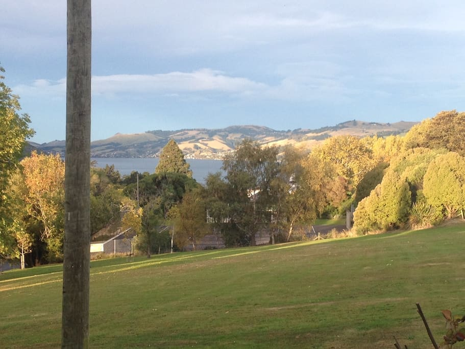 View on the Dunedin Harbour from the path.
