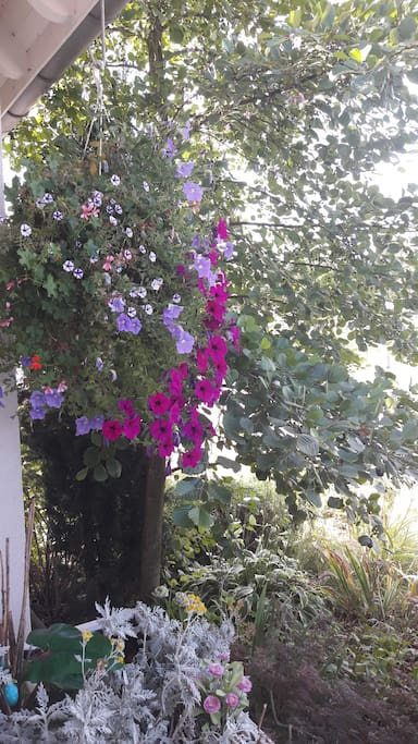 Propriété fleurie