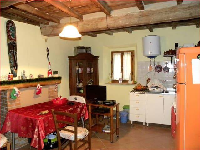 Appartamento caratteristico - Castagneto Carducci