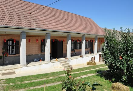 Comfortable renovated farmhouse - Véménd - 一軒家