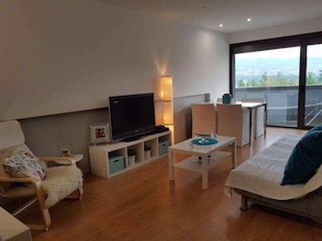 Appartement dupleix Ferreiros Amares