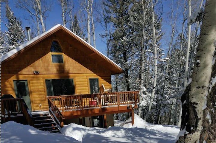Private Colorado Mountain Cabin - Western Slope