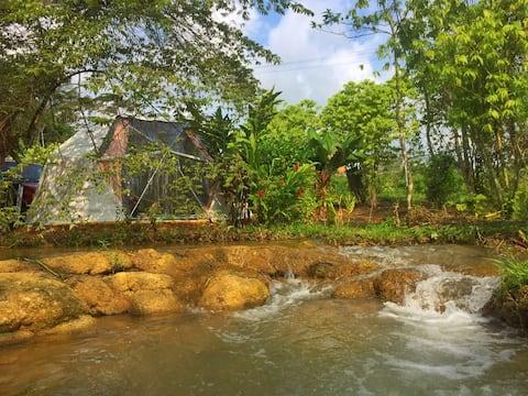 Eco-hosting in de Lacandon-jungle, Bonampak