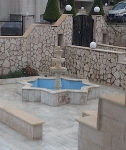 The cozy house - Amman