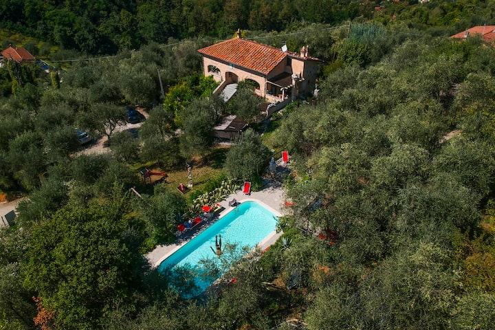 Camera Acquamarina tra olivi e mare vicino a Lucca