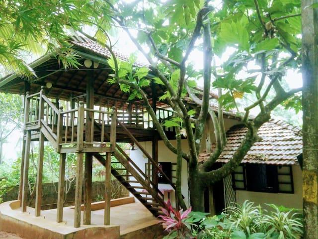 Gorgeous spacious bungalow with magical garden