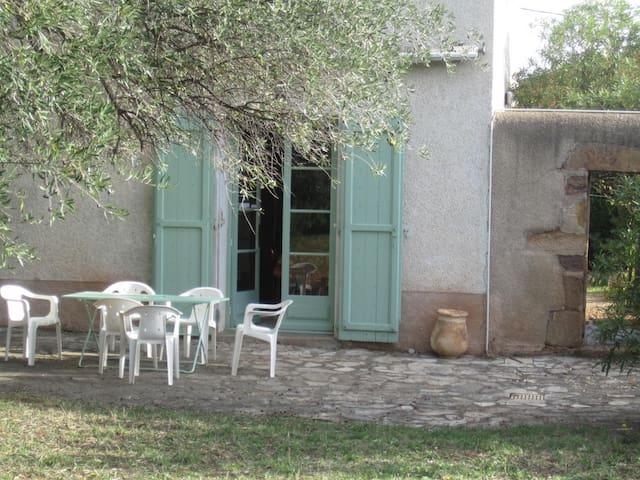 Belle maison de vigneron avec piscine - Cébazan - Talo