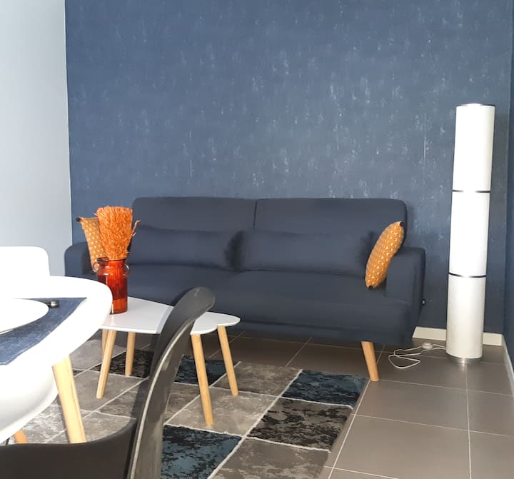 T2 tt confort, jardin privé, terrasse et Piscine