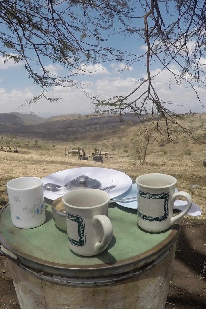 Tea with a view