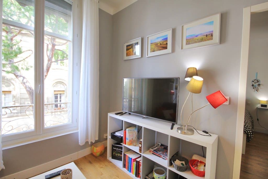 appartement centre historique wifi 1 chambre appartements louer avignon provence. Black Bedroom Furniture Sets. Home Design Ideas