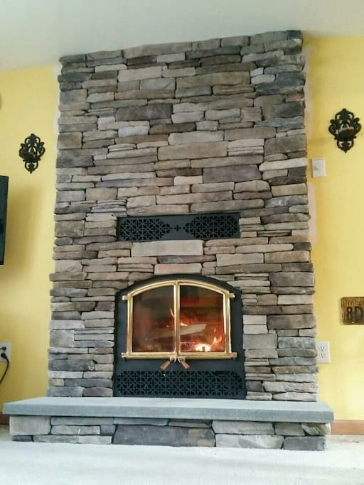 Fireplace insert,   the most amazing place to gather in winter.