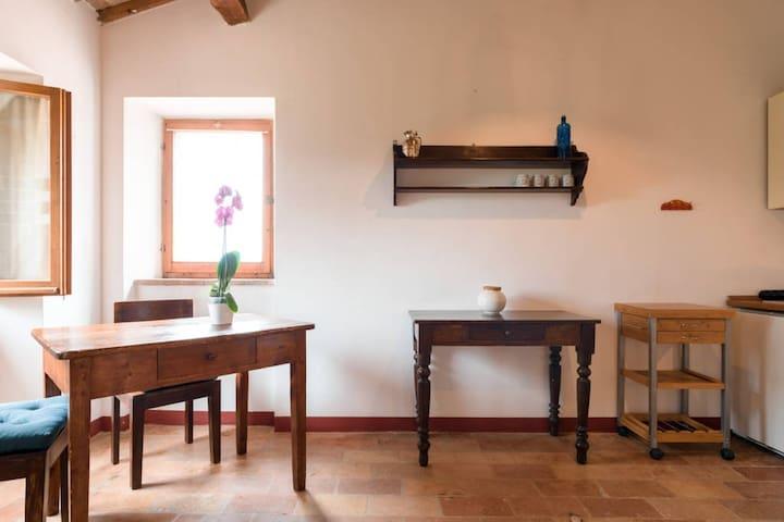 confortable oneroom-flat - Novilara - Apartamento