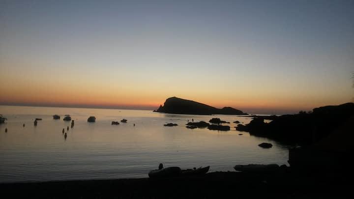 CENTURI - Panorama