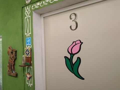Habitacion privada en el centro de merida Room #3