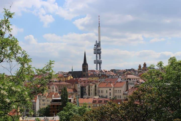 Žižkov TV tower with observatory