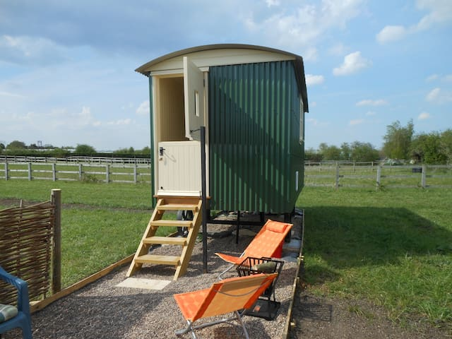 Shepherd's Hut, glamping at Golden Acre