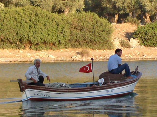 Olivenhuset i Iasos ved Ægeerhavet - Milas