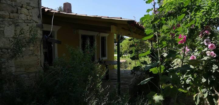 Günlük kiralık İzmir Foça müstakil ev