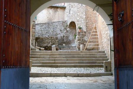 Dimora storica cilentana nel cuore del Parco - Felitto - House
