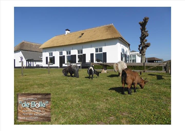 Vakantiehuis ''De Bolle''