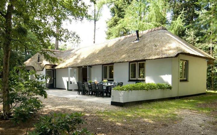 Ruime 12 persoons villa op de Veluwe - Lariks