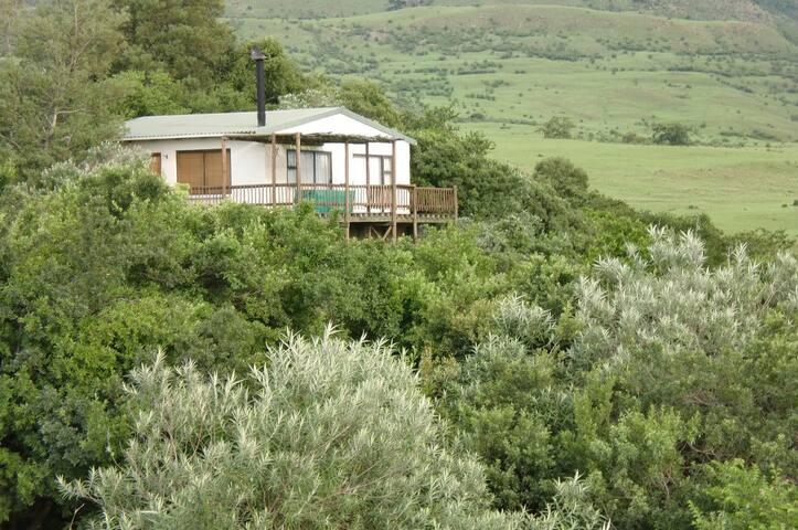 Sunbird Cottage - Wakkerstroom - Chambre d'hôtes
