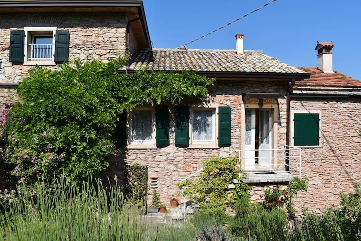 RoseGarden, between Lake Garda and Monte Baldo