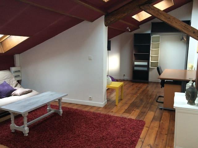 Appartement indépendant de 60m2, propre et équipé - Saint-Étienne - Apartemen