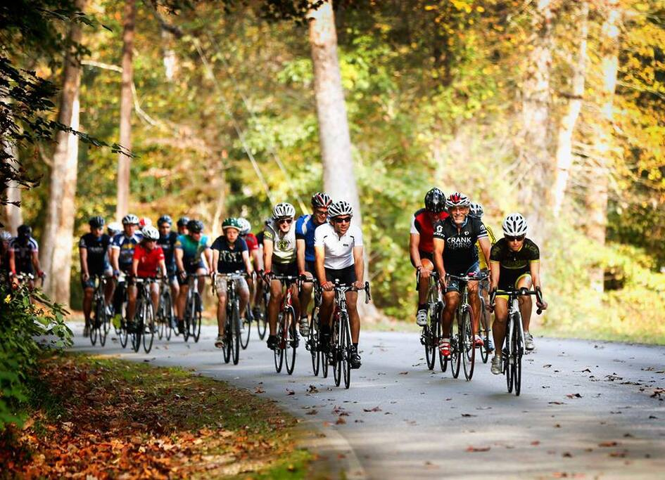 Miles and miles of cycling in beautiful scenic areas of Kentucky