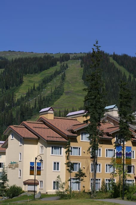 View of the slopes in the summer